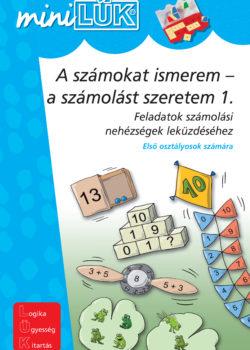a szamokat ismerem 1_borito:257_U4-U1_miLUEK-Dyskalkulie1